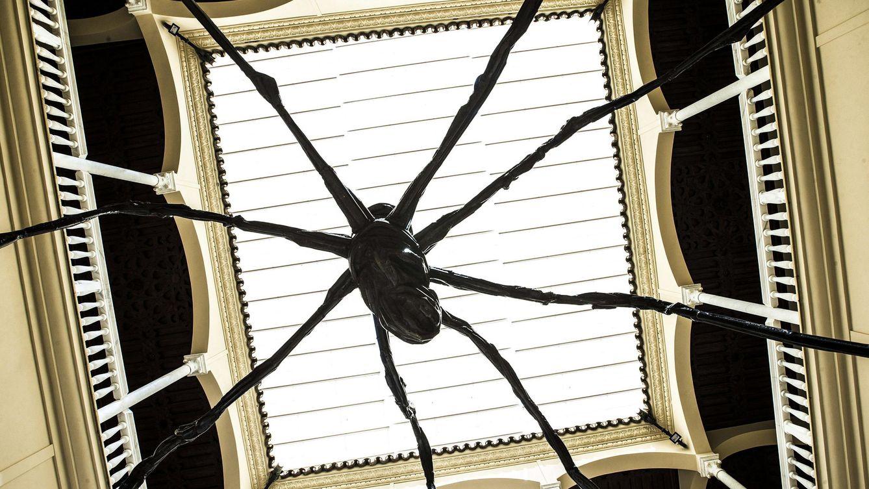 Foto: Vista de la araña de Louise Bourgeois instalada en el Museo Picasso de Málaga. (EFE)