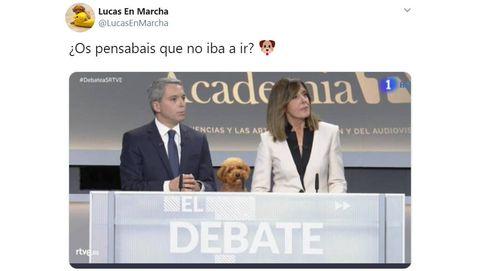 Perro malo, no se roba: el 'arma secreta' de Rivera la lía en Twitter