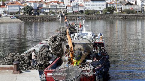 La posibilidad de un Brexit duro angustia a la pesca gallega