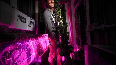 Agricultura urbana en Brooklyn: se buscan emprendedores