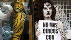 Madrid aprueba el fin de los circos con animales, con los votos del PP en contra