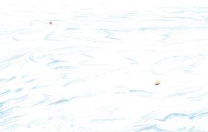 Shackleton para mocosos