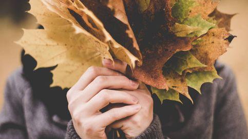 Test: lo que tienes que saber sobre el otoño, ¿eres un experto de la estación?