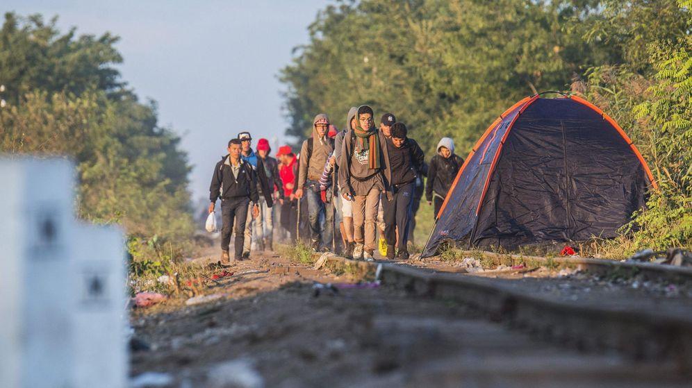 Foto: Migrantes procedentes de Serbia caminan por la vía del tren junto a la población fronteriza de Roszke. (EFE)