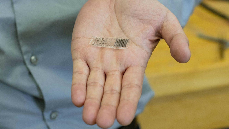 Foto: El implante para reparar huesos que se alimenta del propio cuerpo. (Jason Daley/UW–Madison)