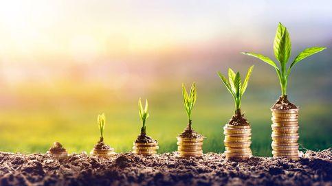 La inversión bajo criterios sostenibles avanza imparable en tiempos de covid