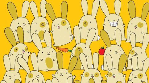 Acertijo viral: ¿eres capaz de encontrar al conejo que no tiene un gemelo?