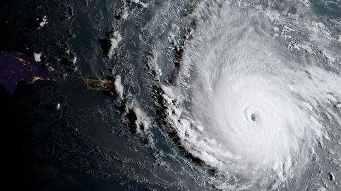 Irma devasta la bolsa: cruceros, naranjas, aseguradoras y el algodón se desploman