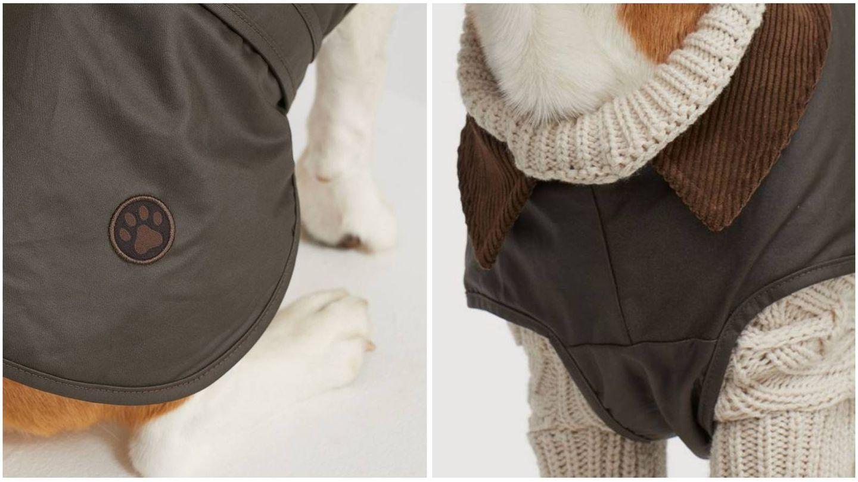 Moda de invierno para perros en HyM. (Cortesía)