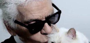 Post de Choupette, la gata influencer de Karl Lagerfeld que cobra 3M de euros al año