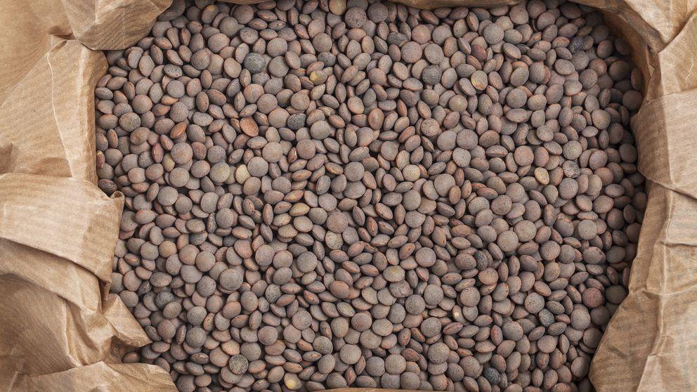 Lentejas: el alimento de hierro (y vitaminas, zinc...)