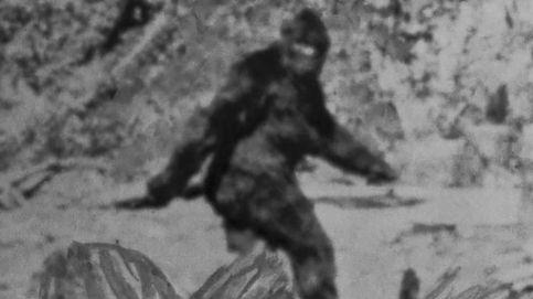 Bigfoot: ¿realidad o mito? El extraño caso que hizo que el FBI tuviera que intervenir