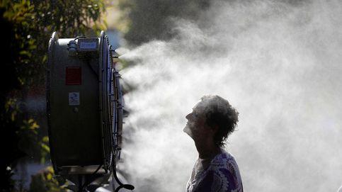 Proyecto de PGE para 2019 y calor extremo en Melbourne: el día en fotos
