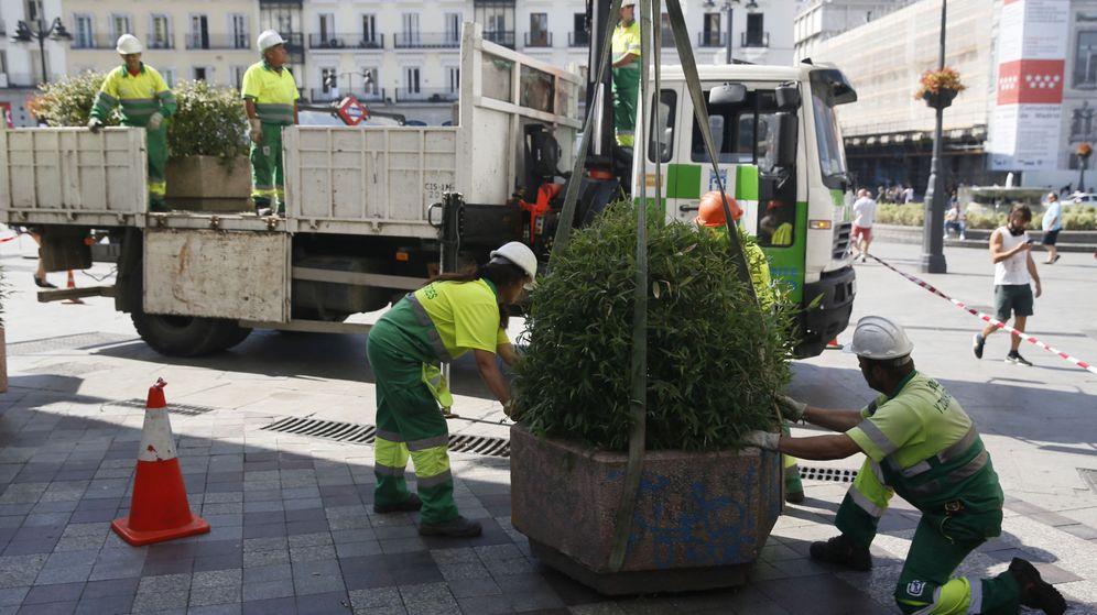 Foto: Operarios del Ayuntamiento de Madrid colocan jardineras en la céntrica calle de Montera. (EFE)