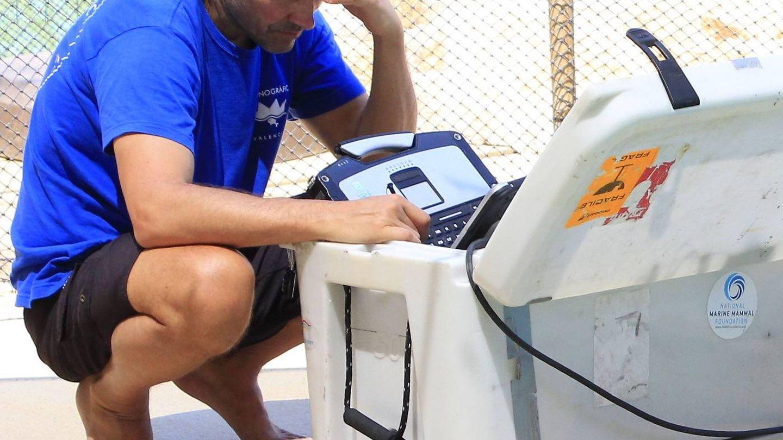 Fahlman, en el Oceanogràfic.