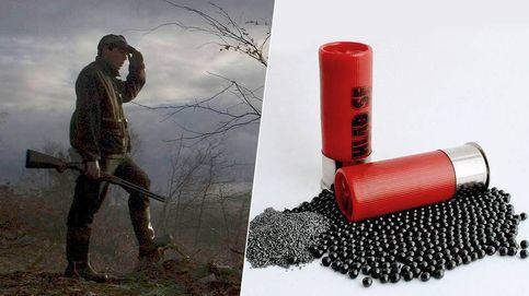 Perdigón de plomo, delicioso pero mortal: los cazadores los adoran y las aves los devoran
