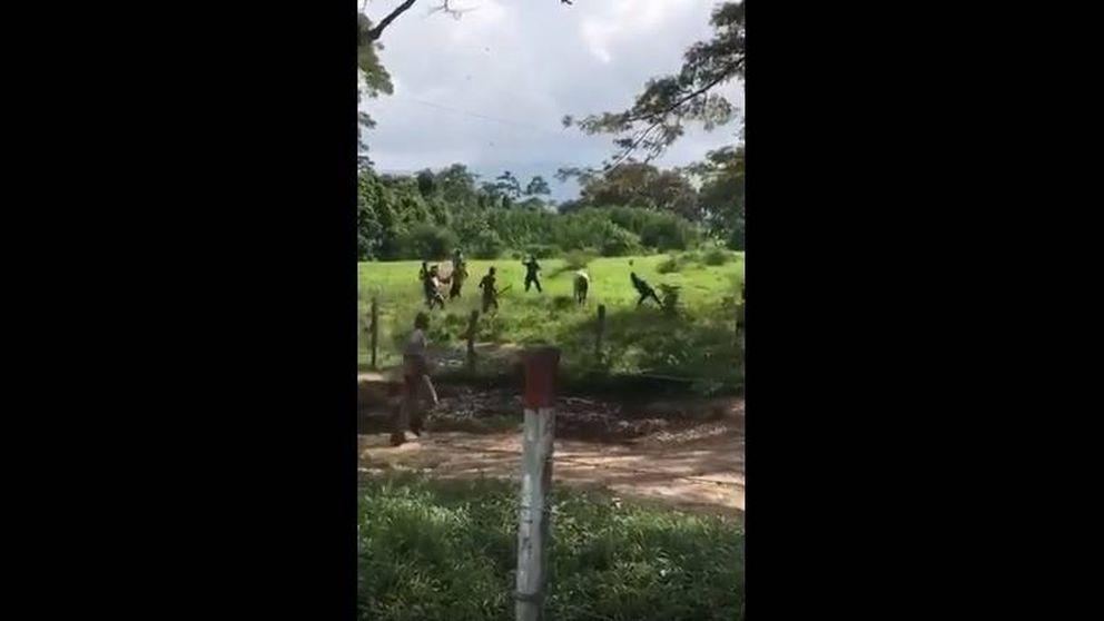Matan a pedradas a una vaca en Venezuela: ¡Tenemos hambre!