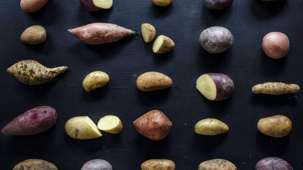 Foto: Existen más de 3.000 tipos de patatas. (iStock)