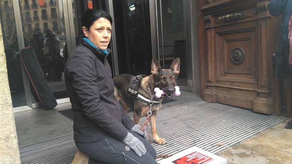 Una víctima de violencia machista pide que su perra sea considerada como lazarillo