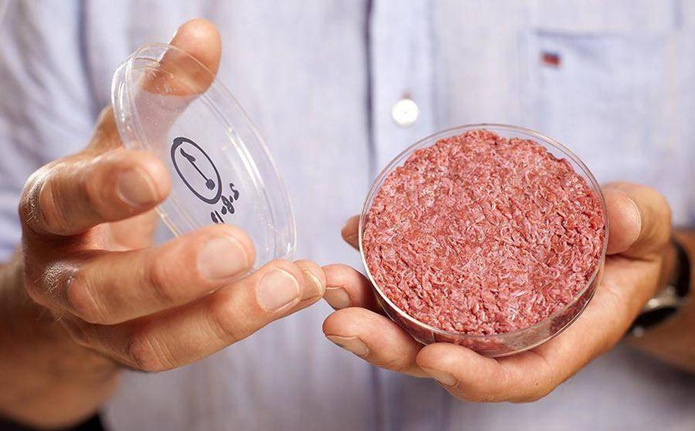Foto: Hamburguesa sintética creada por la Universidad de Maastricht. (Cultured Beef)