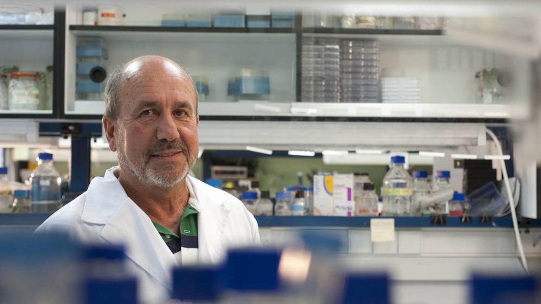 Mariano Esteban: No ha muerto ningún macaco durante las pruebas de nuestra vacuna