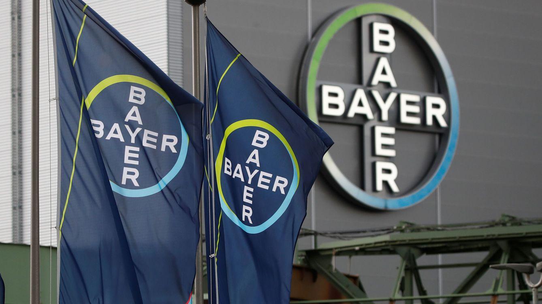 Bayer se desploma un 10% tras anunciar provisiones de hasta 9.000 millones