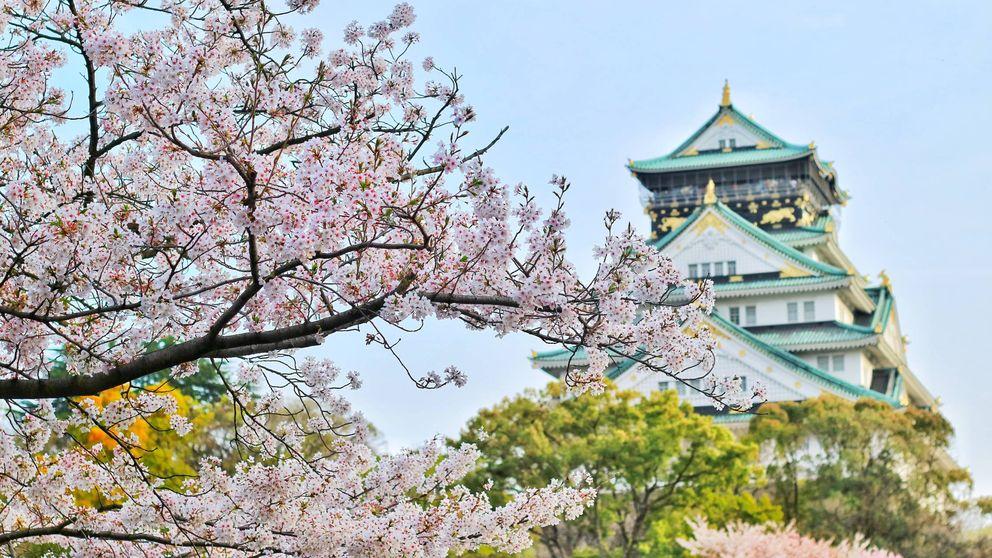 Japón y Maldivas, destinos favoritos de los viajeros... y de los recién casados