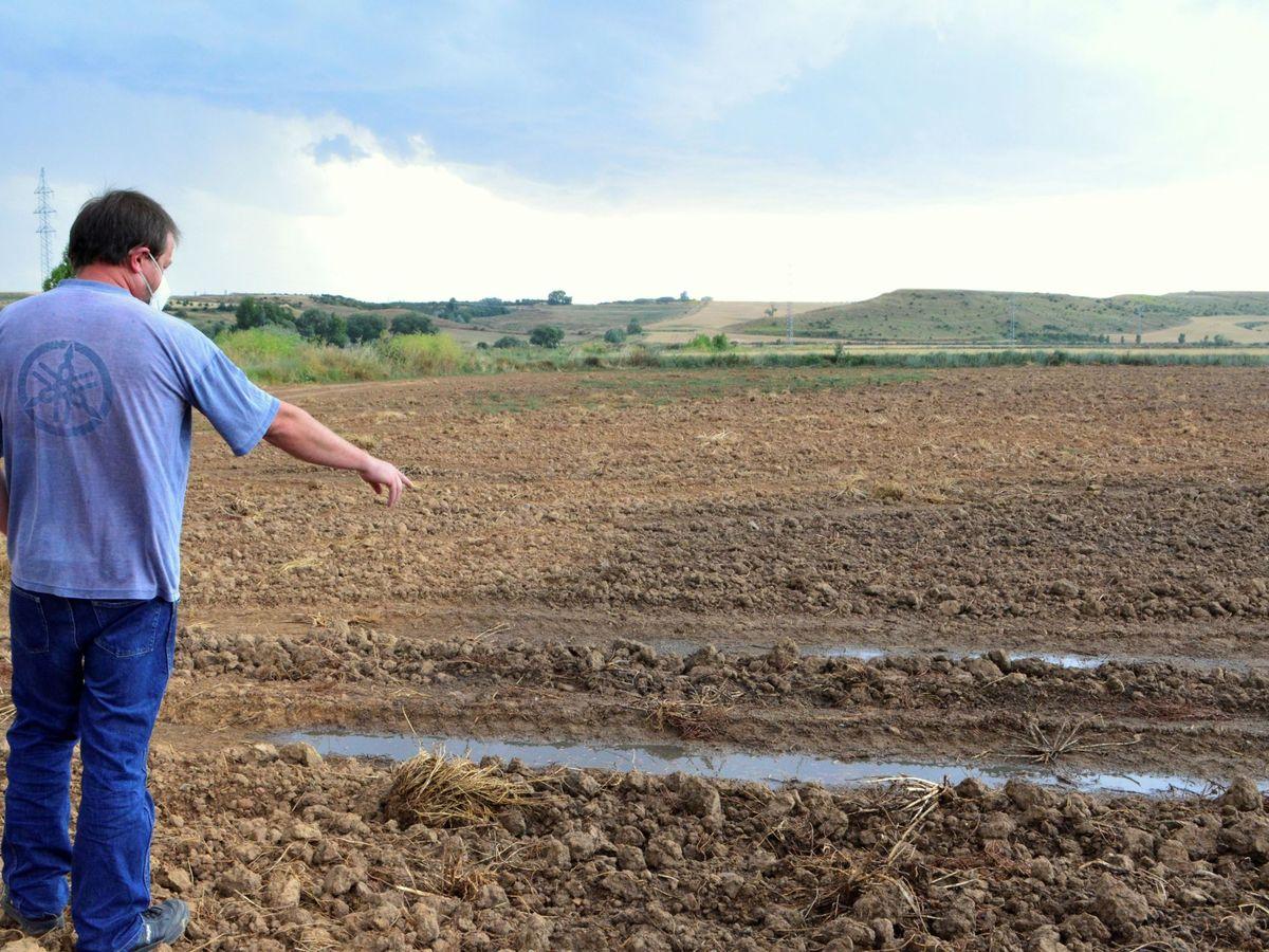 Foto: Un agricultor en la España vacía. (EFE)