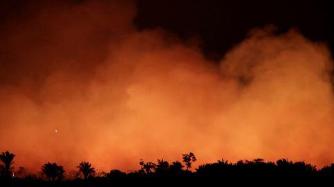 Arde el Amazonas: así es el incendio récord que amenaza el pulmón del planeta