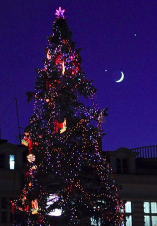Foto: La televisión causa discusiones familiares en Navidad
