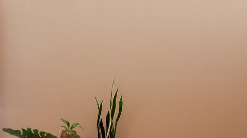 Colores antiestrés para decorar un hogar más tranquilo