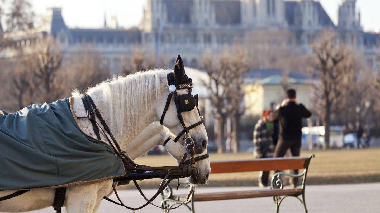 Un carro 'fiaker' en Viena (iStock)