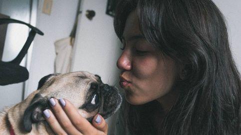 ¿Tu perro te quiere de verdad o es por la comida? El estudio que resuelve la duda