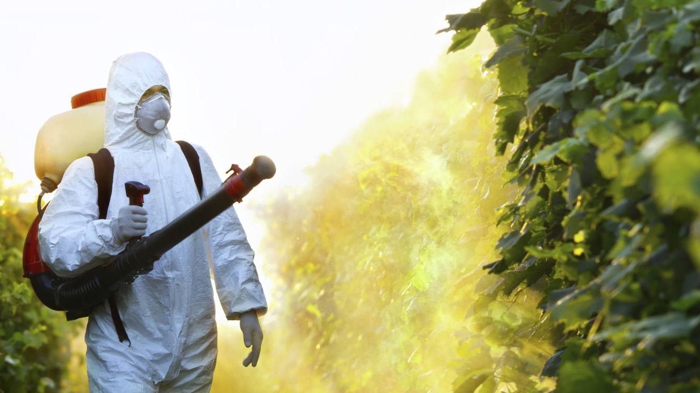 Foto: El aire puede ser tóxico. (iStock)