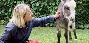 Post de La historia detrás de la nueva mascota (un burro) de Eugenia Martínez de Irujo