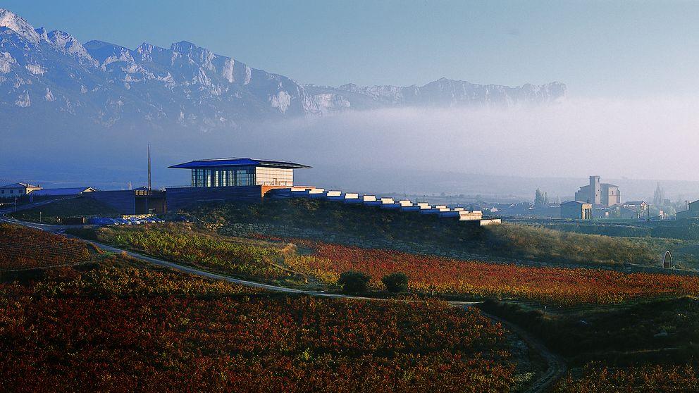 Baigorri de Garage 2010, tinto de escasa producción en la Rioja Alavesa