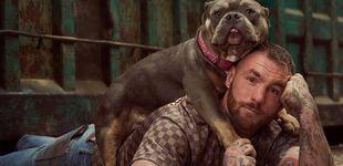Post de La defensa y la protección animal llega a Cuatro con 'A cara de perro'