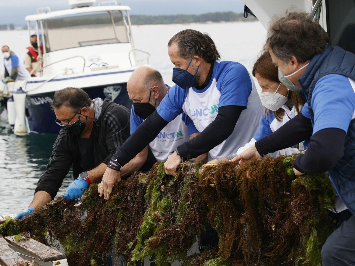 """Foto:  """"El florecimiento del fitoplancton en esta región no tiene precedentes en los 22 años de registro"""" (EFE/Lavandeira)"""