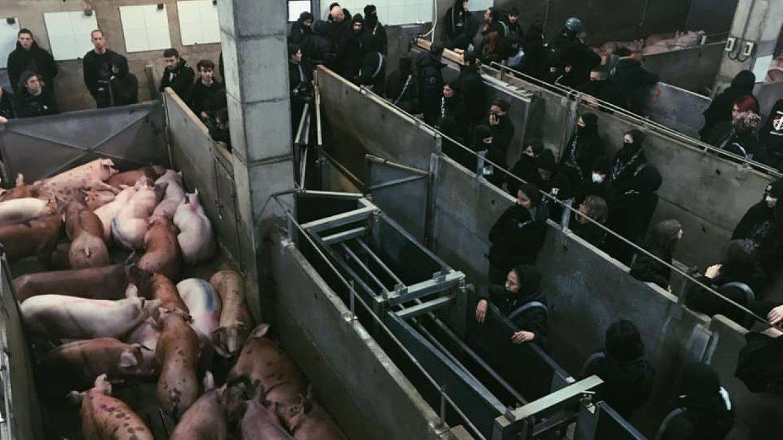 Activistas, en el escrache al matadero de Riudellots de la Selva.