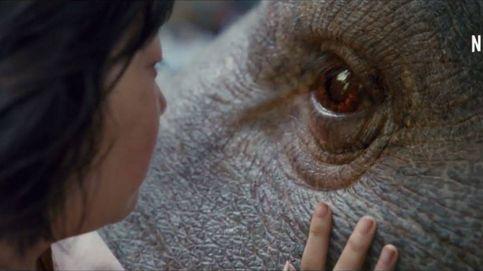 Netflix anuncia la fecha de estreno de 'Okja'
