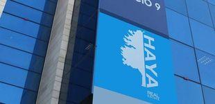 Post de La inmobiliaria de Cerberus en España (Haya Real Estate) prepara un ERE
