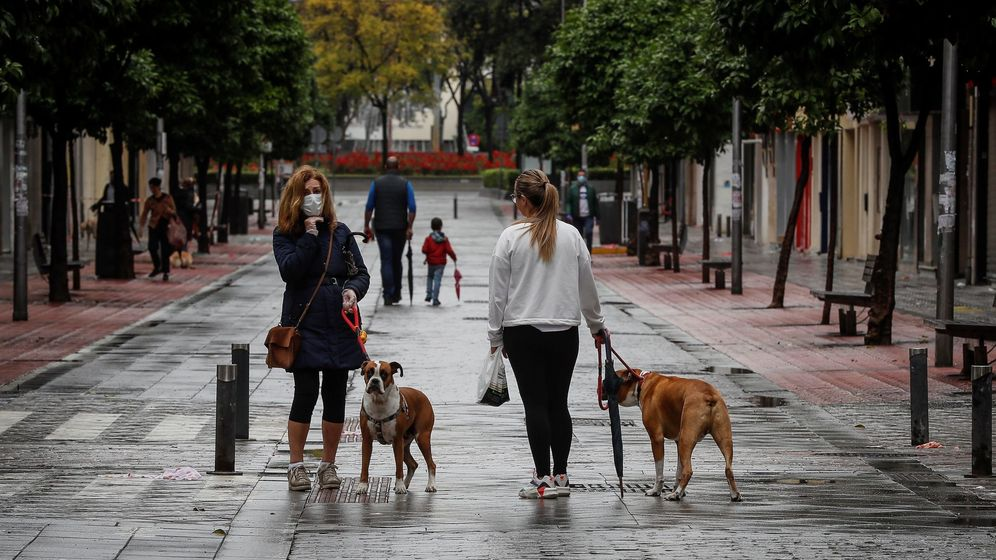 Foto: Personas pasean con sus perros y sus hijos en Sevilla. (EFE)