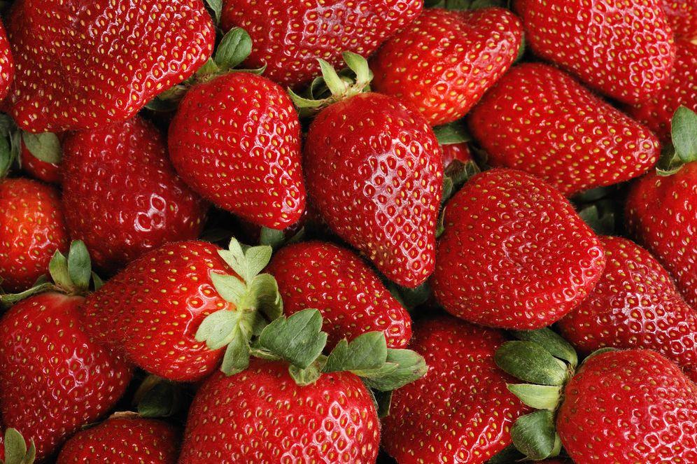 Foto: España es el principal suministrador de fresas para Reino Unido. (iStock)