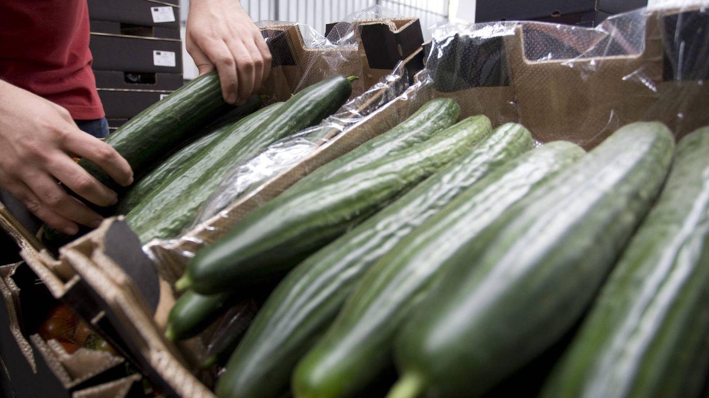 Unica, primer exportador de hortalizas: El agricultor tiene que dejar de especular