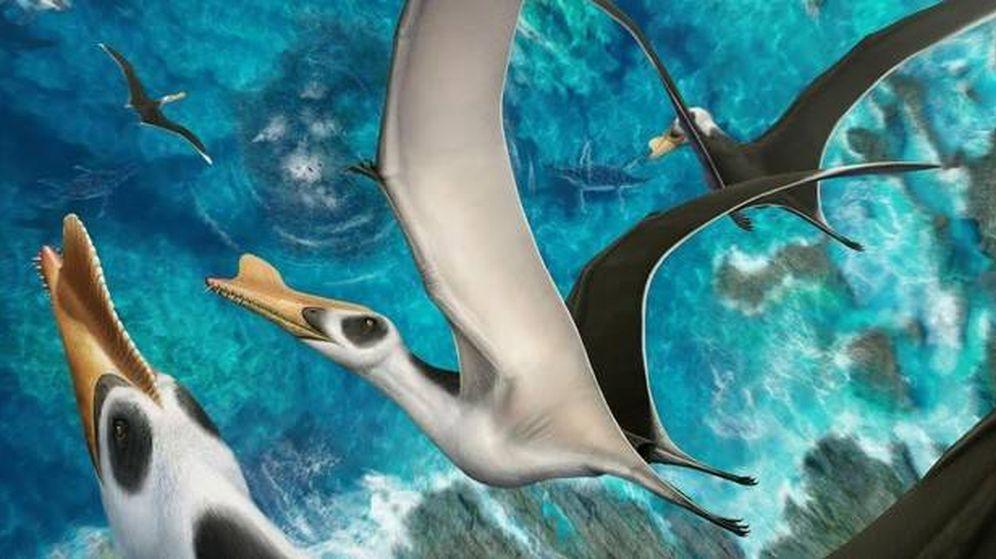 Foto: Ilustración del Iberodactylus andreui (Imagen de Hugo Salais-López / Metazoa Studio)
