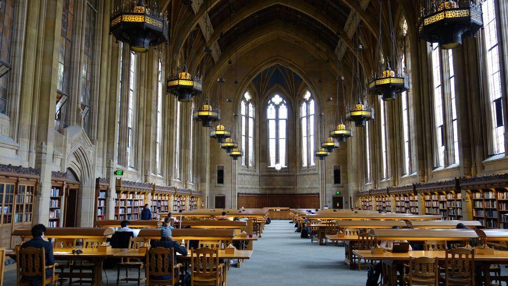 Foto: Biblioteca de una universidad. (Unsplash)