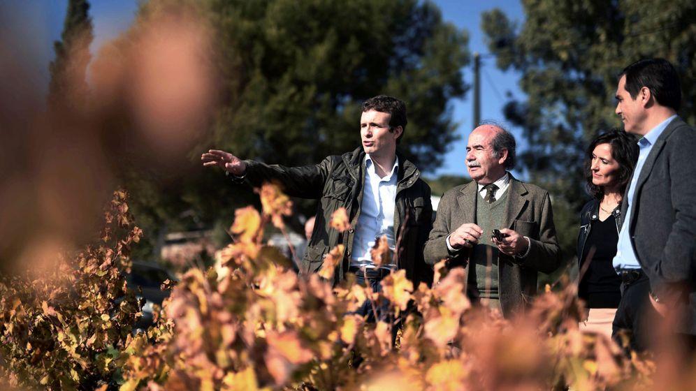 Foto: Pablo Casado en una visita a Córdoba. (EFE)