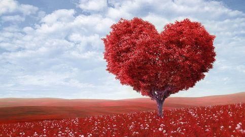 Frases de amor bonitas y originales para enamorar y conquistar