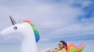 Unicornio de mar