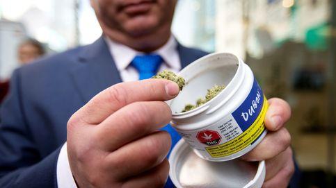 El cannabis mejora los síntomas del Crohn